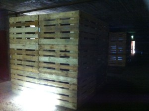Video installation with euro pallets in a bunker, Bochum