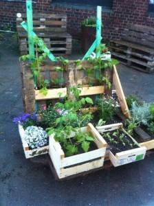 Pallet garden installation, front view