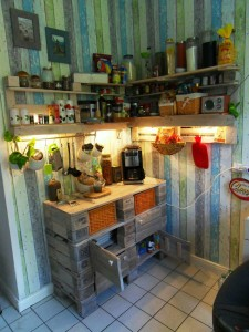 Pallet cabinet  and kitchen shelf, with lights