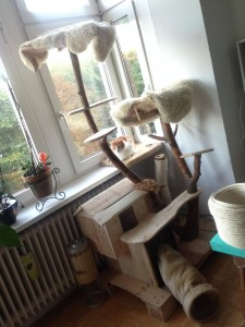 Sisal rope round the scratching post